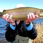 Six Lakes bow